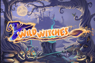 Machine a sous 5 rouleaux Wild Witches